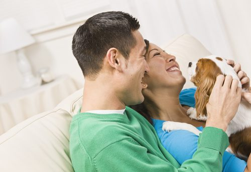 The Best Pets for Rental Home Living