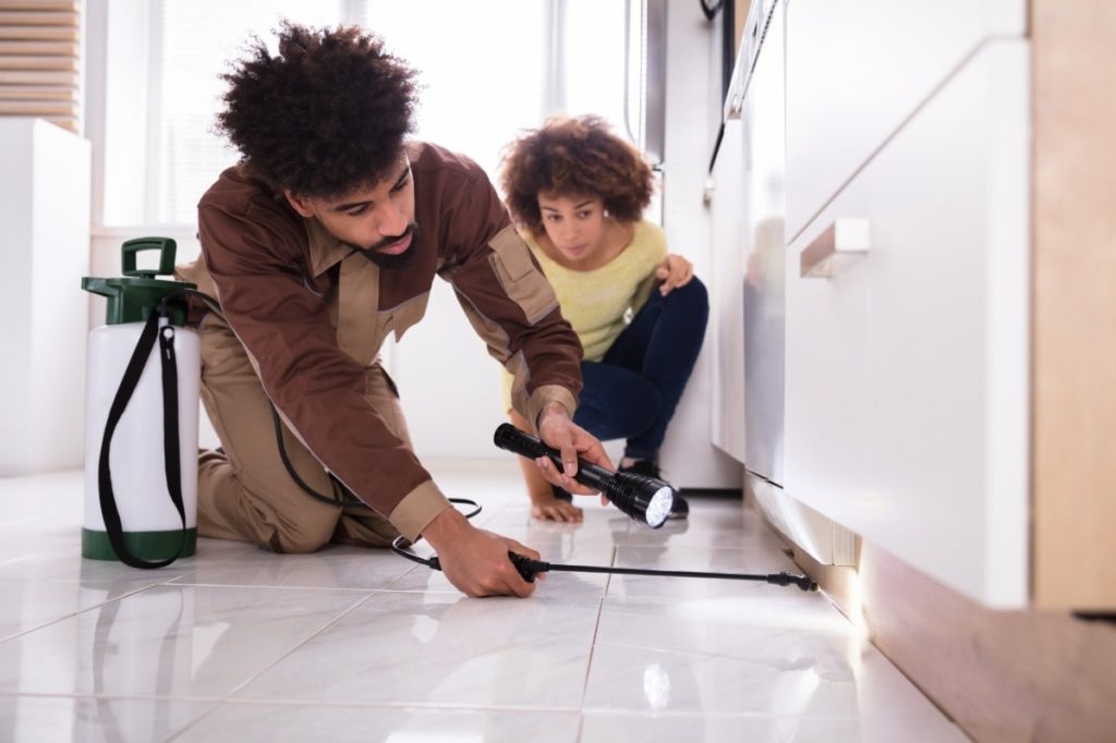 Young woman watches a pest inspector is inspecting under her cabinets and spraying a solution.