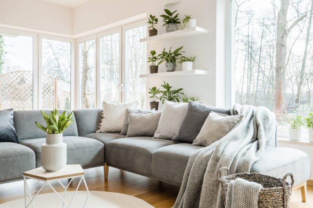 A living room with small plants on white shelves.
