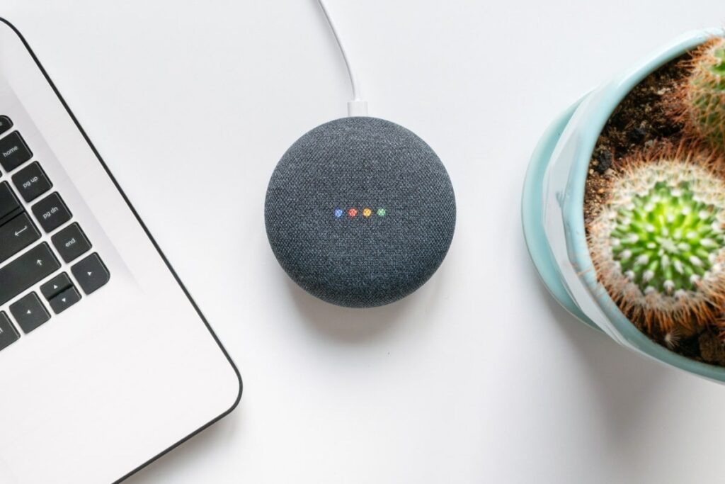 Google Assistant device sitting on a table between a laptop and mini cactus plant.