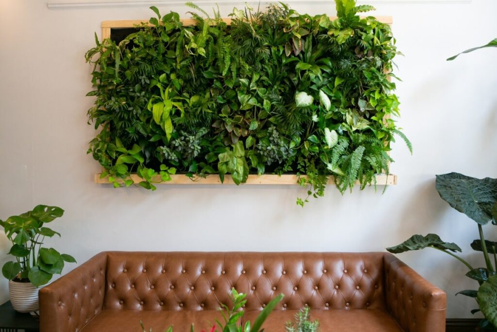 Horizontal rectangular shaped living wall hanging on a white wall, an example of implementing biophilic design. Couch is against the wall surround by plants.