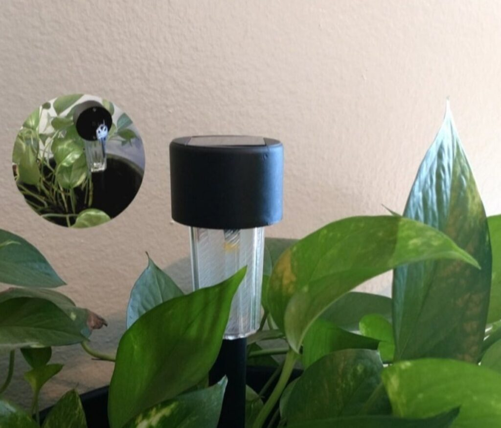 Display of solar light hide a key device in a flower pot with plants.