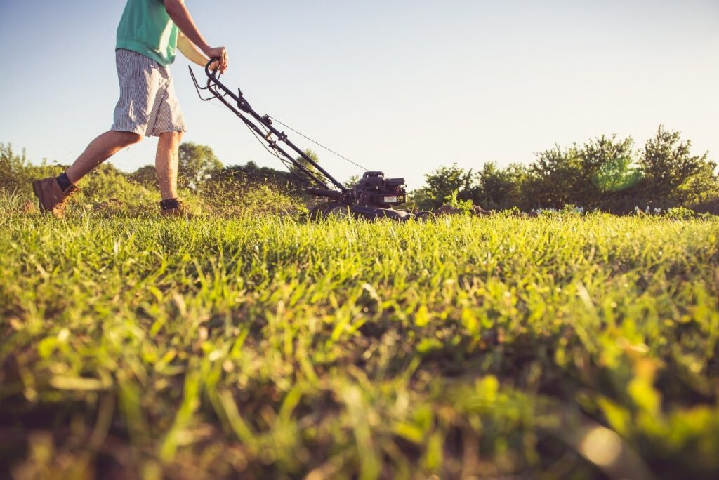 A young man mowing the grass on his rental property during the early evening.